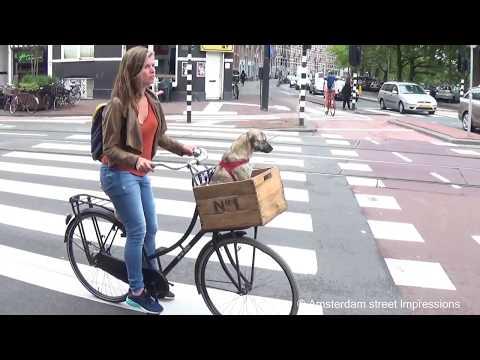 Nassaukade Amsterdam North Holland