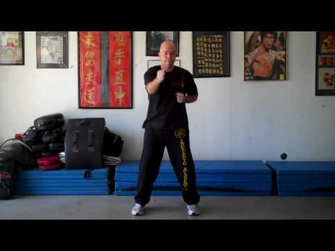 Siu Lin Tau - First Form - Pan Nam Wing Chun