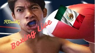 Im a Boxer ?!? | Boxing Live