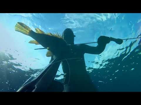 Spearfishing - Cold winter in Kvarner bay