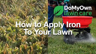 How to Apply Iron to Your Lawn