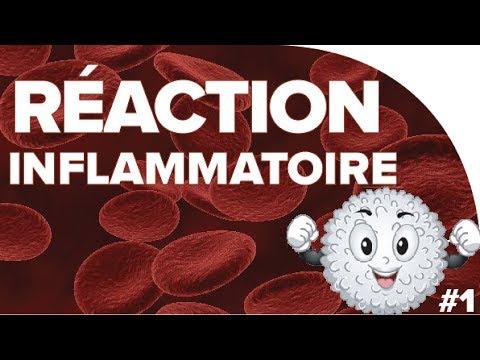 La Réaction Inflammatoire #1 - SVT Terminales S - Mathrix