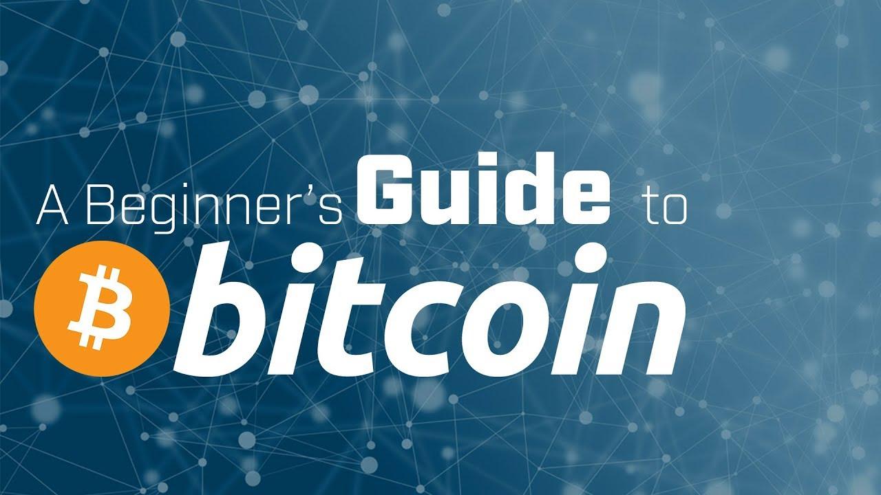 What Bitcoin rehberi think, that