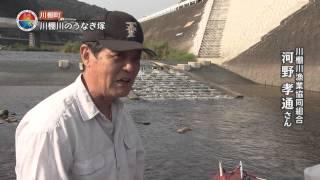 川棚川のうなぎ塚(川棚町)