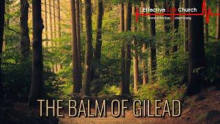 Effective Life Church - The Balm Of Gilead - Pastor Matthew Guest