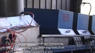FK 22L Automatic Orange Cleaning, Grading and Waxing Machine from Fong Chow Agricultural Machinery