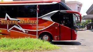 Kabut Sindoro Sumbing ! Trip Bus SUGENG RAHAYU Patas Banjarnegara – Jogja