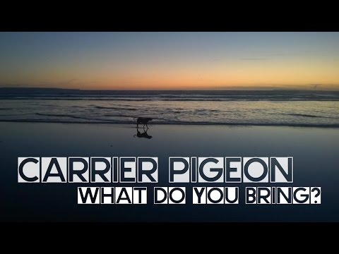 Éra - Carrier Pigeon (OFICIÁLNÍ VIDEO S TEXTEM)