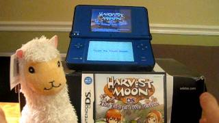 Harvest Moon The Tale of Two Towns Review