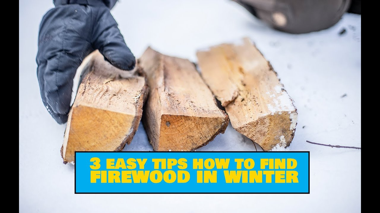 How to Find Firewood in Winter / Küttepuude leidmine talvel  - Outdoors Camping Tips