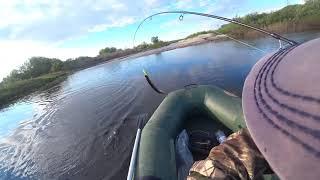 Давно не ловил ЩУКУ а тут ОДНА ЗА ОДНОЙ Рыбалка