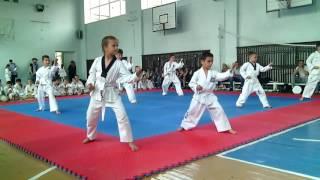 Аттестация по тхэквондо Желтый пояс Taekwondo ITF.  Полтава
