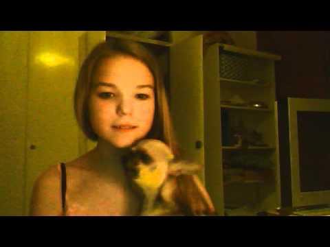 Videoklippet som hör till loveupandora inspelat med webbkamera den 24 mars 2012 13:13 (PDT)