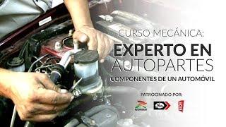 Curso Mecánica: Experto en Autopartes | Componentes de un Automóvil