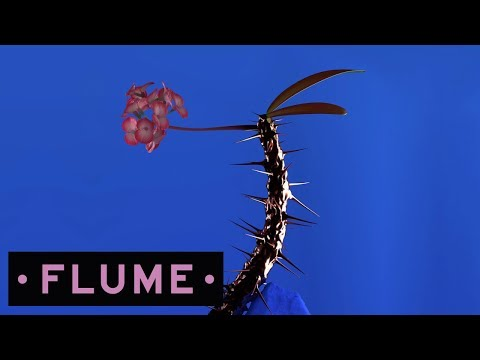 Flume - Weekend feat. Moses Sumney
