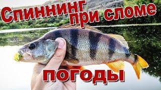 Микроджиг и колебло спасают рыбалку в бесклёвье | Спиннинг на Дону в конце лета