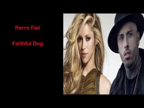 Perro Fiel lyrics meaning | Shakira Ft. Nicky Jam | English Translation