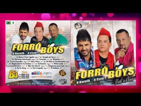 Forró Boys Vol. 5 - 17 To Solteiro