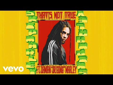 "Skip Marley - That's Not True (Audio) ft. Damian ""Jr. Gong"" Marley"