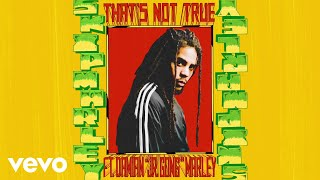 """Download Skip Marley - That's Not True (Audio) ft. Damian """"Jr. Gong"""" Marley Mp3 and Videos"""