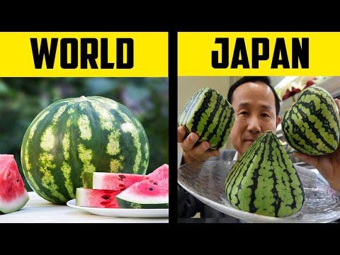 जापान के बारे में 20 रोचक तथ्य | 20 Interesting Things You Didn't Know About Japan