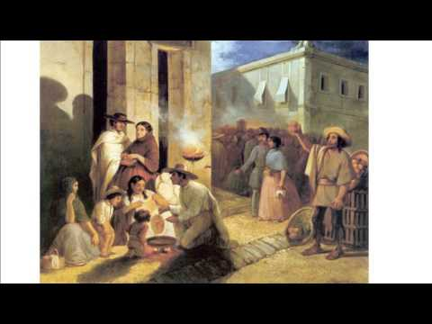WHAP Ch 16 pt 3  - Latin American Culture & Society and North American colonies