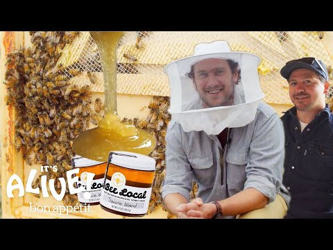 Brad Makes Honey  It's Alive  Bon Appétit