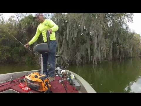 mid-march-central-florida-bass-fishing