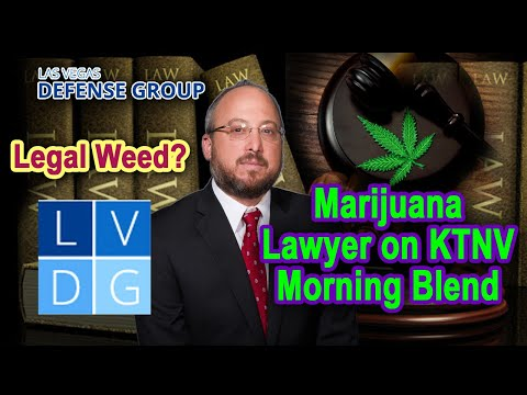 Legal weed in Nevada? Marijuana lawyer on KTNV Morning Blend