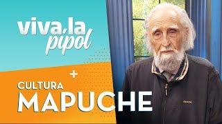Gastón Soublette explica: ¿Qué debemos aprender de la cultura mapuche? - Viva La Pipol