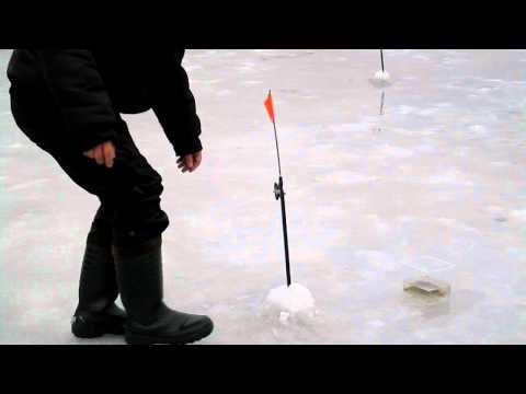 жерлицы на щуку в украине видео