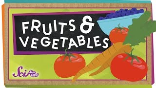 What's the Difference Between Fruits and Vegetables?