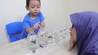 Drama Azufi Jadi Pedagang Ikan Cupang dan Pembeli Ibu Rempong !