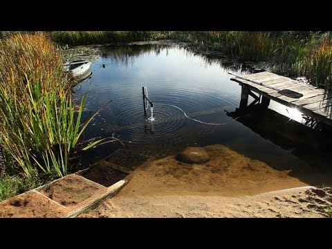 How to make a sandy beach in an organic pool natural - How to make a natural swimming pool ...