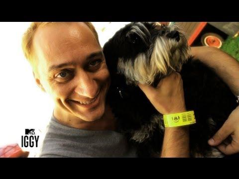Paul van Dyk Prefers Rock'n'Roll — MTV Iggy Interview