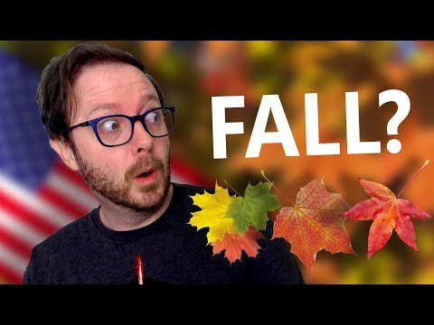Why Americans Say Fall to Mean Autumn | Distant Words