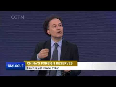 CHINA'S FOREIGN RESERVES 中国的外汇储备 - CGTN Dialogue