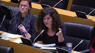 Sofía Castañón en la Comisión de Igualdad el 31 de Enero
