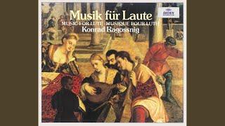 Parma: Lute music - Italy - Aria del Gran Duca - La Cesarina - La Mutia - La ne mente per la...