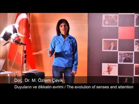 Duyuların ve Dikkatin Evrimi: Munire Ozlem Cevik at TEDxTunali