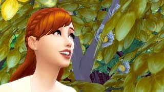 MONEY TREE // The Sims 4: 100 …