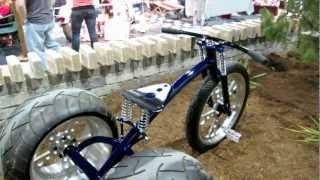 Custom 3 Wheel Tricycle