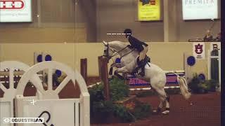 Georgia Equestrian Countdown: 50 Days
