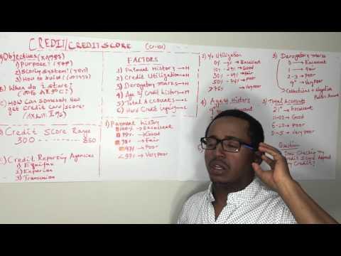 Credit Score | AMHARIC VERSION | ክሬዲት ስኮር - 1