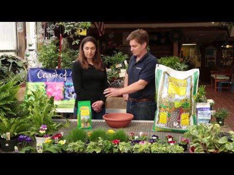 Bumper Crop Plant Food 5-2-4