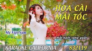 HOA CÀI MÁI TÓC 🎤 Karaoke California 832119 (HD)