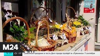 В Москве появились четыре парка по проектам европейских дизайнеров - Москва 24