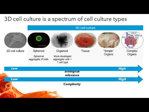 Advances in Three-Dimensional Cell Culture in Drug Research and Discovery