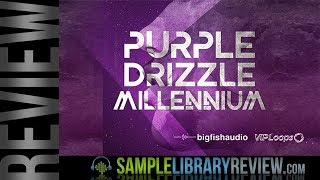 Review Examples: Purple Drizzle Millennium by Big Fish Audio / VIP Loops