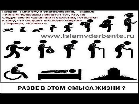 Мусульманские картинки скачать бесплатно смыслом жизни 2